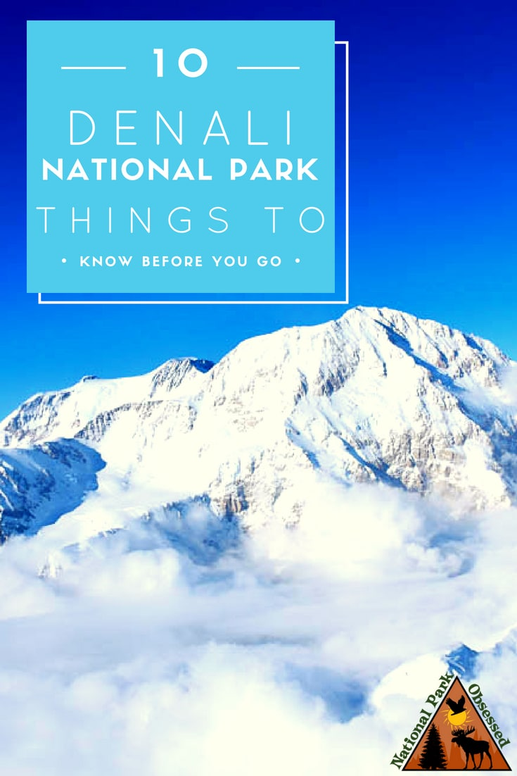 Planning a trip to Denali National Park and Preserve, Alaska? Denali is home to a diverse landscape from the highest mountain in North America to taiga forest. The park has 6 million acres to explore.  Here are 10 things to know before visiting Denali National Park and Preserve.