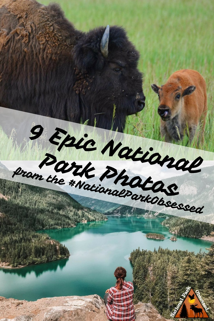 Check out some of the most epic national park photos from the #NationalParkObsessed community.  June 2018 was our first month and it has been exciting.