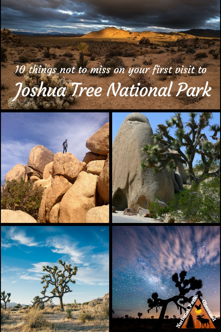 Looking to discover the unique beauty of Joshua Tree? Find out the top 10 things you shouldn't miss on your first visit to Joshua Tree National Park. #JoshuaTree #JoshuaTreeNPS #JoshuaTreeNationalPark #NationalParks #NationalPark #findyourpark #nationalparkgeek #nationalparkobsessed