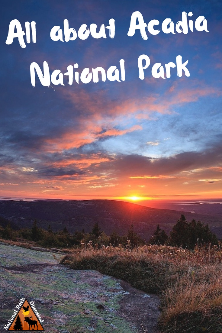 Planning to visit @AcadiaNPS? Don't know where to start. Let #NationalParkObsessed help you plan your trip to #Acadia with guides, itineraries, things to know and much much more.