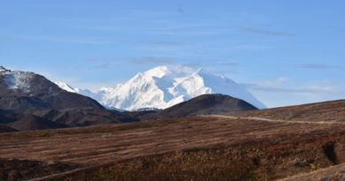 Denali Road Lottery – Everything You Need to Know