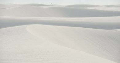 One Day at White Sands National Monument