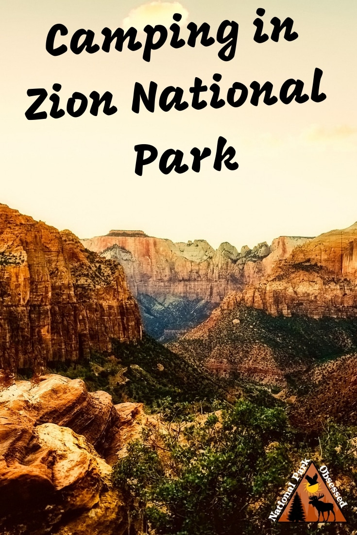 Planning on going camping in Zion National Park?  Confused about which campsite to pick. National Park Obsessed's Ultimate Guide is here to help you pick the very best campsite.