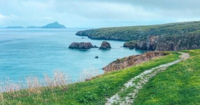 14 things not to miss on your first visit to Channel Islands National Park