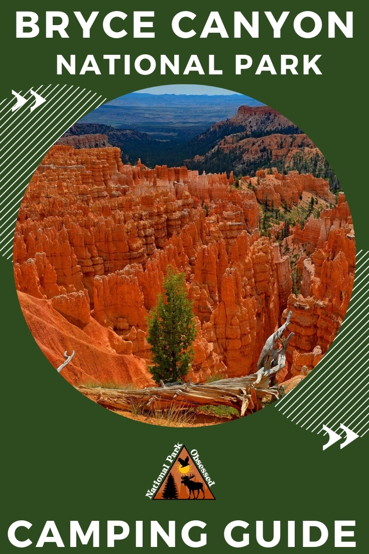 Planning on going camping in Bryce Canyon National Park?  Confused about which campsite to pick. National Park Obsessed's Ultimate Guide is here to help.    #NationalParkObsessed #NationalParkGeek #NationalPark #NationalParks #FindyourPark #NPS #Bryce #Brycecanyon #brycecanyonNps#camping #utah