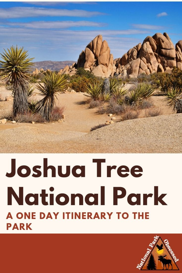Looking to spend one day in Joshua Tree National Park? Here is everything you need to know to spend a day exploring Joshua Tree.