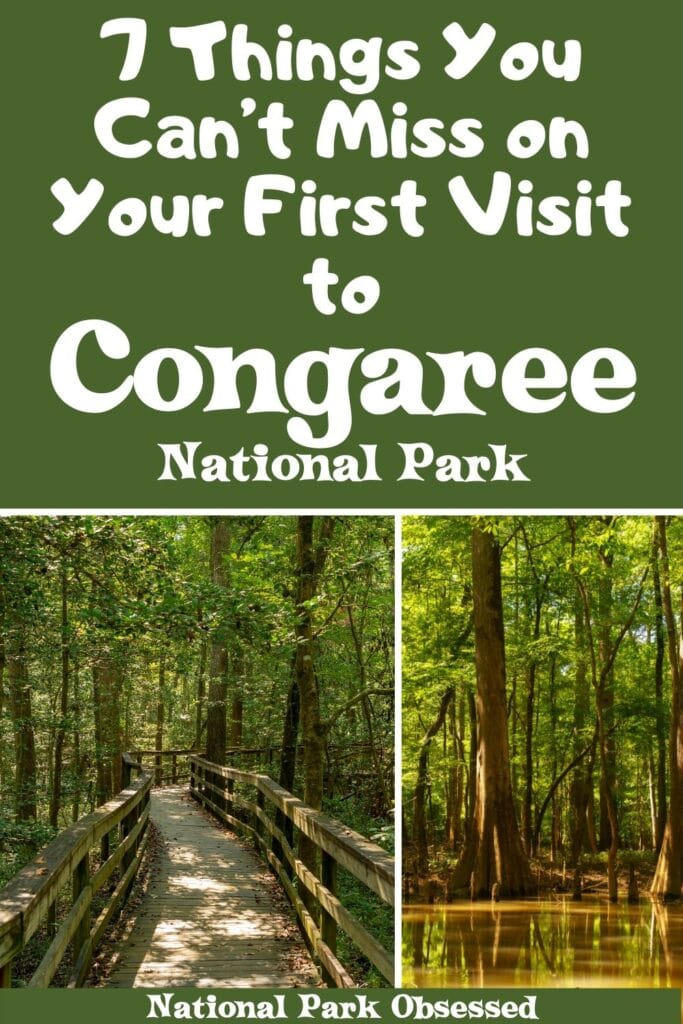 Planning your first visit to Congaree? Here are 7 things not to miss on your first visit to Congaree National Park. Includes canoeing, hiking, and other amazing activities.   Congaree National Park things to do / Things to do in Congaree National Park