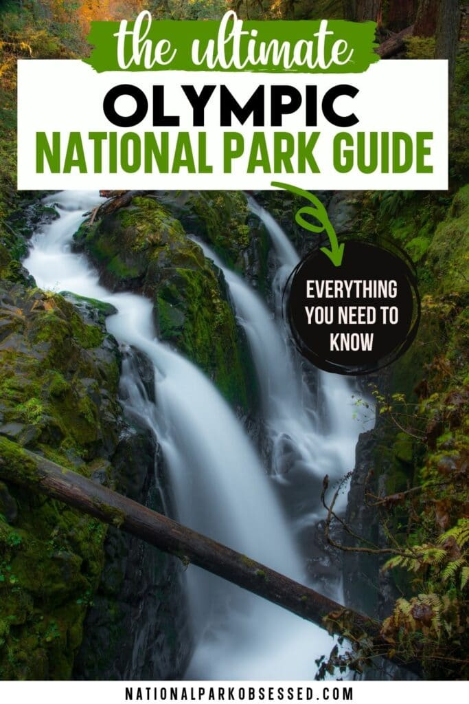 Are you planning a trip to Olympic National Park? Click here for the complete guide to visiting Olympic National Park written by a National Park Expert.   Olympic National Park Trip Planning / visit Olympic National Park / Olympic National Park Vacation / Olympic Trip