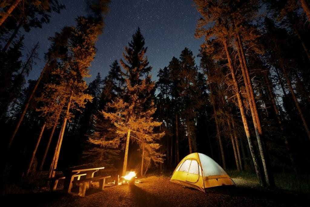 Camping under the stars in the forest with a yellow tent and a campfire.