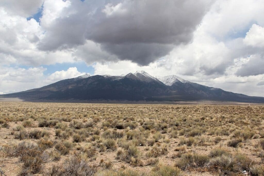 The bushy plains at the base of a snow-peaked mountain.