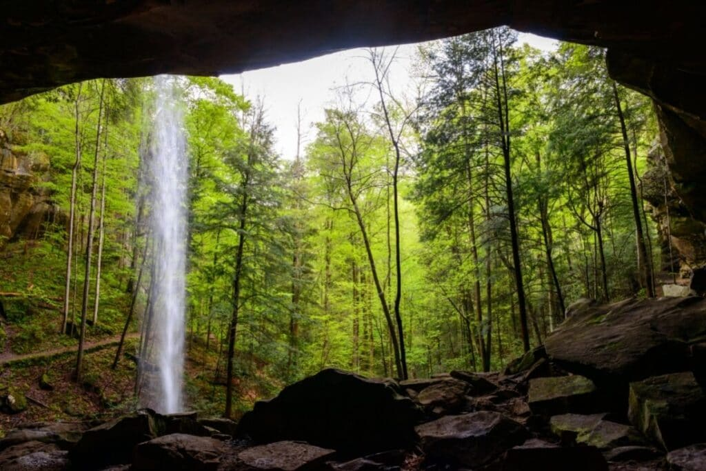 A stone arch opens into a lush green forest with a waterfall