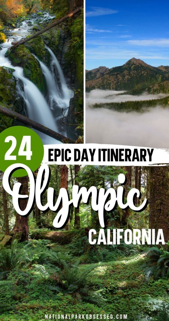 Want to make the most of your one day in Olympic National Park?  Click HERE to learn how to make the most of your 1 day in Olympic National Park.  things to do in Olympic National Park / Best hikes in Olympic National Park / Seattle Day Trip / Olympic Day Trip / Olympic National Park day trip