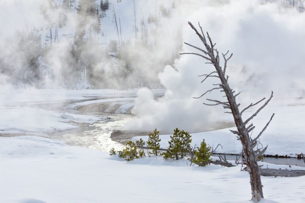 One of Yellowstone's hot springs empty into a snowy river.  There is lots of steam.