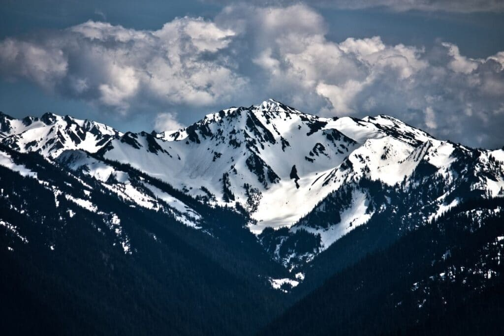 The snowy mountain tops of the Olympic Range